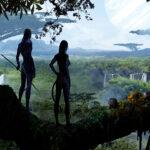 Avatar paraiso psicologia Vigo